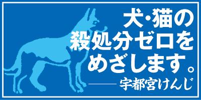 Banner_animal01